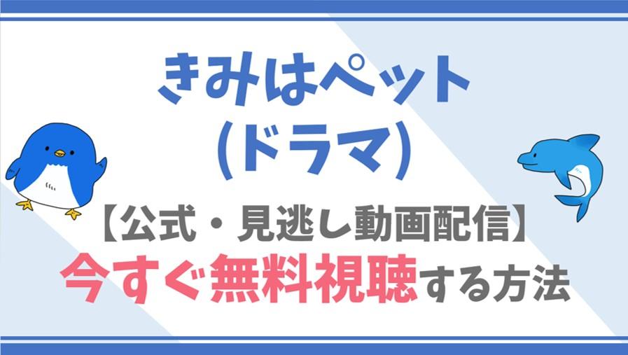【公式無料動画】きみはペット(ドラマ)を全話フル配信を視聴する方法!入山法子・志尊淳らキャスト情報/あらすじも!
