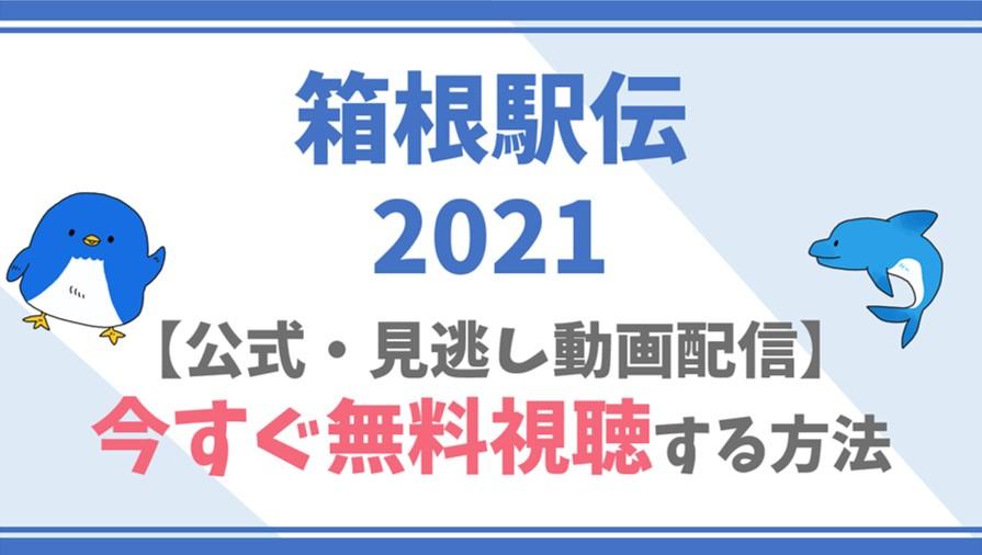 箱根駅伝2021の視聴方法を徹底解説!【1/2配信】見逃し配信期限はいつまで?